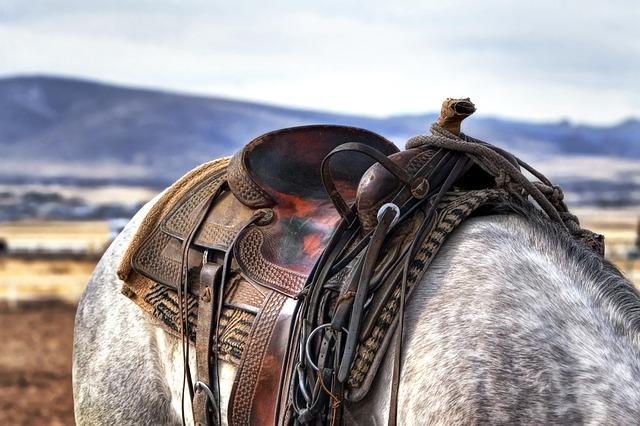 Come prevenire la ferita della sella: una guida per cavalieri pesanti