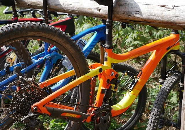 Biciclette per ogni tipo di pilota