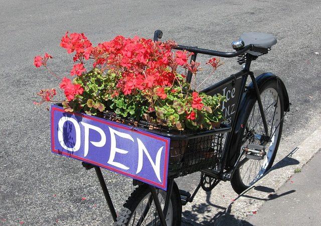 Gite in bici organizzate: un ottimo modo per trascorrere la giornata prendendo sole ed esercizio fisico