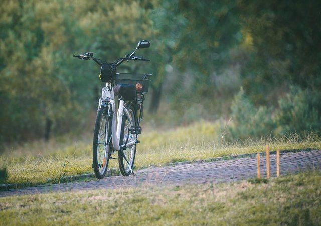 Bicicletta motorizzata e suoi vantaggi